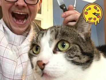 Rettet meine Katze... (es kamen keine Tiere zu Schaden)