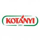 KOTÁNYI Logo