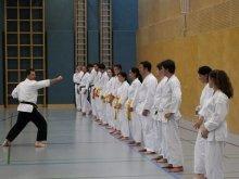 Kostenloser Karate- und Selbstverteidigungskurs