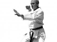 Karate Union Wien Gutschein Foto 2