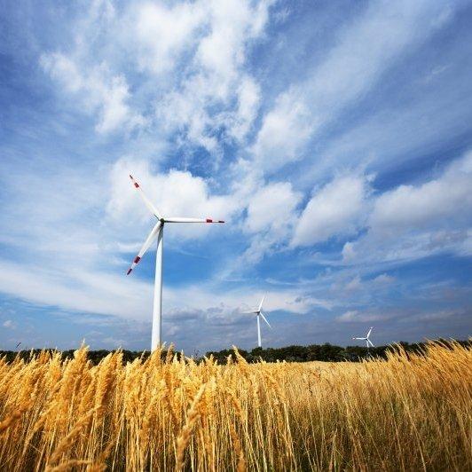 oekostrom AG schenkt dir 4 Energie-Monate!
